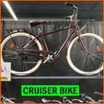 cruiser bike in Holland