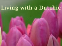 Living With A Dutchie international group Gouda Rotterdam Netherlands