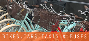 bike shops car rentals dealers leasing taxi services in Netherlands