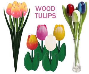 Dutch wood tulips