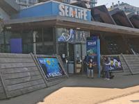 SeaLife Scheveningen aquarium The Hague Netherlands