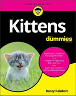 care guide for kittens Netherlands